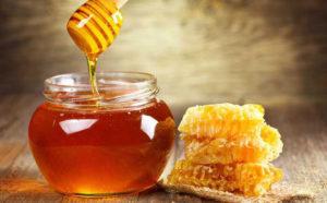 Kháng sinh tự nhiên trong mật ong